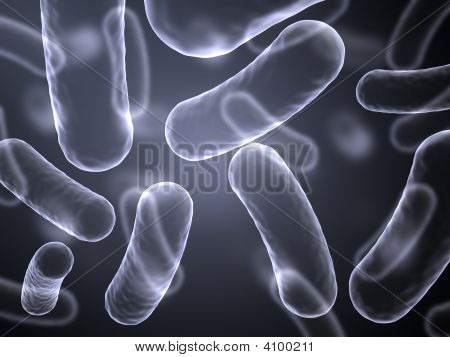 X-Ray Abstract Image Of Bacteria Cells