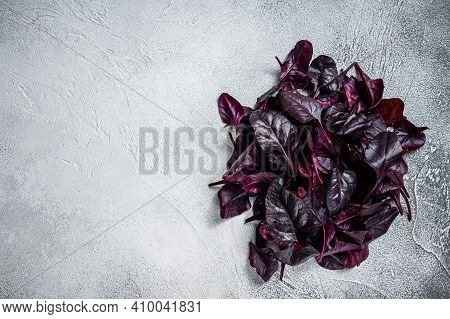 Leaves Of Swiss Red Chard Or Mangold Salad. White Background. Top View. Copy Space
