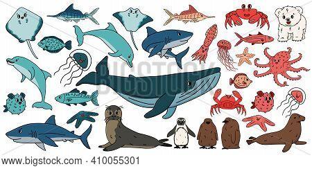 Big Set Of Vector Cartoon Outline Isolated Sea Ocean North Animals. Doodle Whale, Dolphin, Shark, St