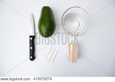 The Process Of Growing Avocado At Home. In The Photo, A Knife, An Avocado, A Glass Of Water And Wood