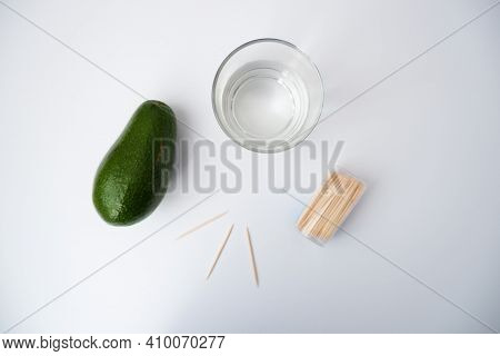 In The Photo, An Avocado, A Glass Of Water And Wooden Sticks On A White Background. The Process Of G