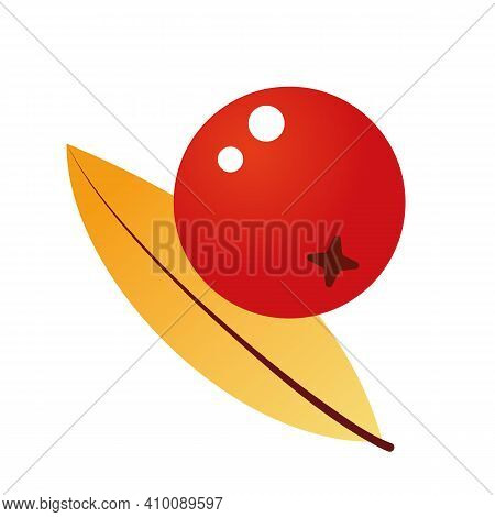 Composition Of Rowan Berries And Leaves. Vector Illustration Isolated On A White Background. Mountai