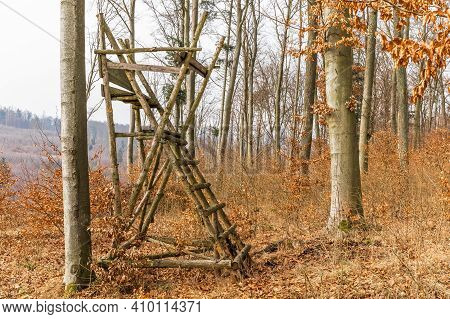 Hunting Tower In Beech Forest. Autumn Hunting. Hunting Season In Czech Republic. Hunting Wild Pigs.