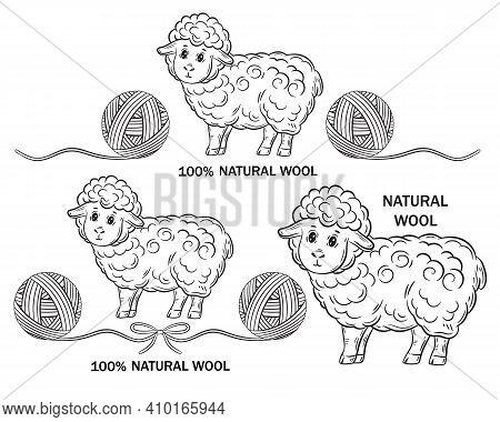 Merino Sheep Natural Wool For Hand Knitting Outline Icon Set. Ewe With Round Ball Of Yarn. Handmade