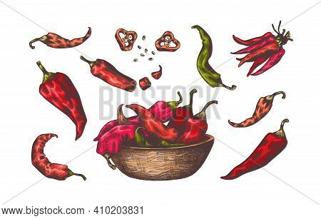 Chili Pepper. Hand Drawn Colored Sketch Of Kitchen Hot Seasoning. Red And Green Isolated Vegetables
