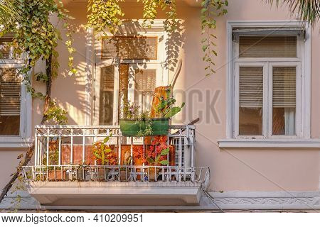 Exterior Of Old House Wall In Pastel Colors With Grapevine, Balcony And Flower Pots,  Lit By The Sun