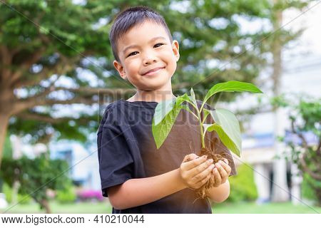 Happy Asian Child Boy Hands Holding A Little Green Plant With Soil. Growing Tree. Spring Season. Sav