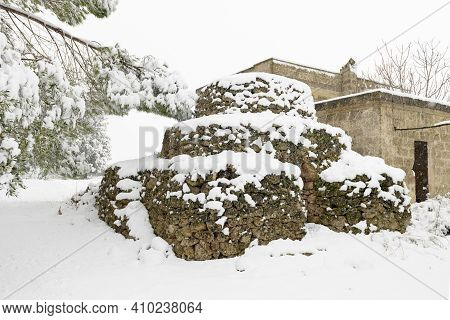Beautiful Apulian Landscape After Snowfall, Trullo And Olive Trees In An Olive Grove In The Snow, Un