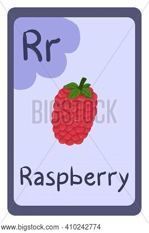 Colorful Abc Education Flash Card, Letter R - Raspberry. Alphabet Vector Illustration With Food, Fru