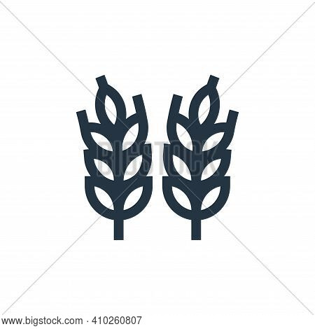 wheat icon isolated on white background from history collection. wheat icon thin line outline linear