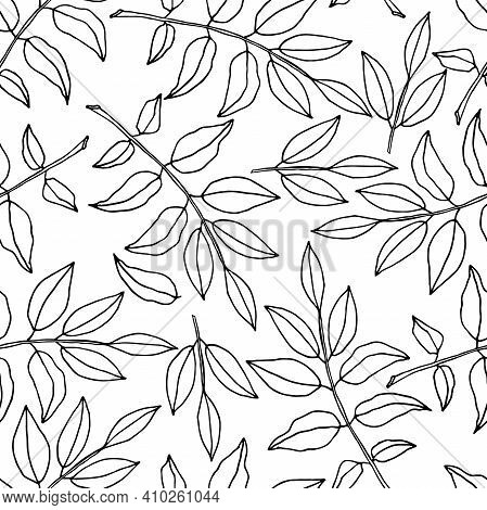 Leaves Seamless Pattern. Linear Contour On White Background. Hand Drawn Doodle Style. Digital Paper
