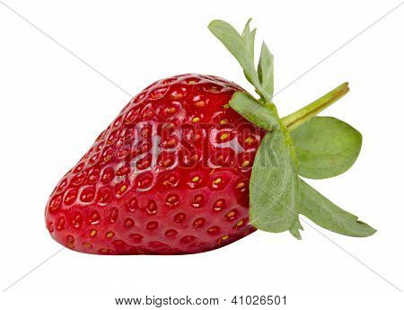 Beautiful Strawberry Isolated On White