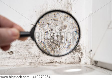 View Through A Magnifying Glass White Wall With Black Mold.