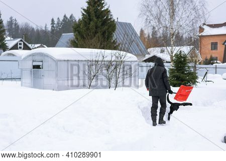 Adult Man In Black Winter Clothes Shoveling Snow In The Garden From A Sidewalk Or Driveway With A Li