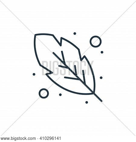 feather icon isolated on white background from brazilian carnival collection. feather icon thin line