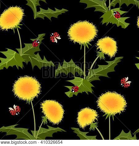 Vector Pattern With Dandelions And Ladybirds.yellow Dandelions And Ladybugs On A Black Background In