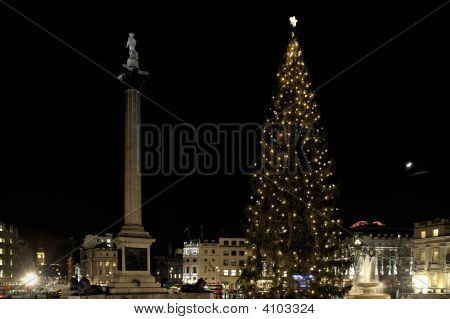 Christmas Tree In Trafalgar Square Given To The People Of London By The City Of Oslo In Gratitude Fo