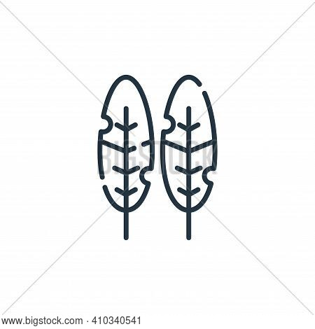 bird feather icon isolated on white background from hippies collection. bird feather icon thin line