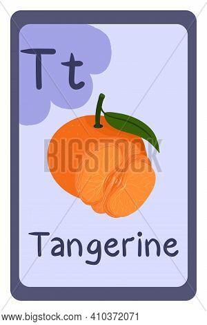 Colorful Abc Education Flash Card, Letter T - Tangerine, Citrus Exotic Fruit. Alphabet Vector Illust