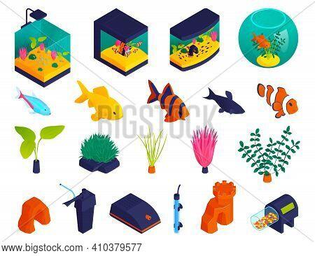 Aquariums Shapes Types Tanks Fishbowl Isometric Fish Aquatic Plants Oxygen Pumps Filters Accessories