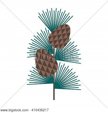 Simple Minimalistic Green Branch Of A Cedar With Needles And Brown Pine Cone. Floral Collection Of E
