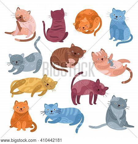 Adorable Cats Characters. Cute Cat, Funny Isolated Kitten Lying Playing Or Relaxation. Animal Meow,