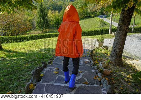 Child Wearing Orange Raincoat, Hood And Blue Rubby Boots Walking In Autumn Park. Rainy Clothing