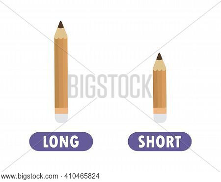 Words Short And Long With Pencil, Opposite Word Antonym For Children Flat Vector Illustration Isolat