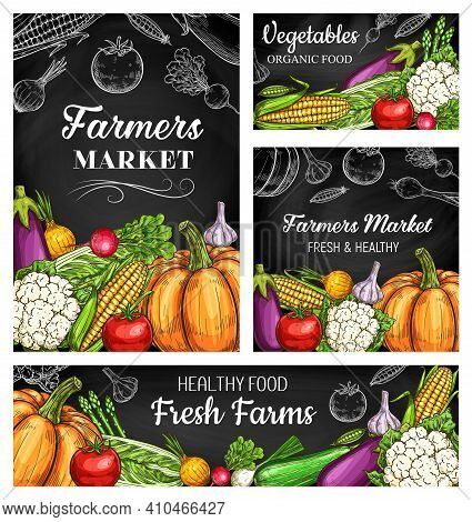 Farm Vegetable Chalkboard Banners With Vector Sketches Of Fresh Garden Veggie Food. Ripe Tomato, Nap