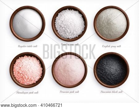 Salt Types Realistic Set With Top View Of Colorful Sea Salt In Dishes With Text Captions Vector Illu