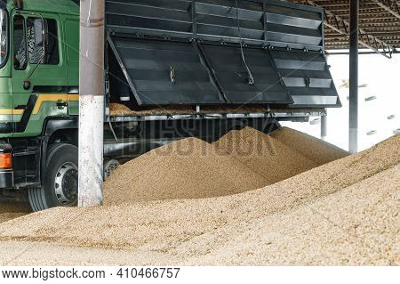 Big Pile Of Pressed Wooden Pellets In A Farm