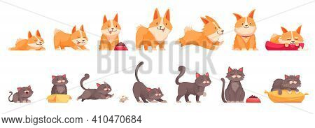 Pets Growth Stages Set Of Isolated Icons Cartoon Characters Of Cat And Dog At Different Age Vector I