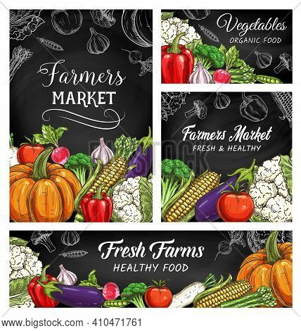 Fresh Vegetable And Veggie Food Vector Sketches Of Farmer Market Blackboards. Organic Farm Tomato, B