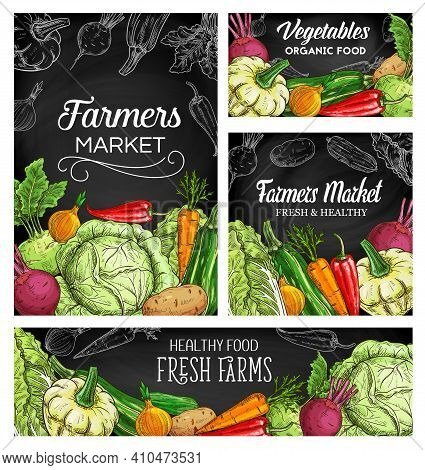 Farmer Vegetables Vector Sketch Posters. Squash, Chili Pepper And Lettuce With Beetroot. Potato, Oni