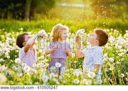 Two Kids Boys And Little Baby Girl Blowing On A Dandelion Flowers On The Nature In The Summer. Happy