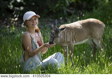 Unity With Nature. Girl Feed Deer. Enviroment Protection. Animals Care. Woman Feeding Fawn. Animal P