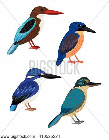 Small Colored Birds. Cartoon Bright Flying Characters Of Ornithology, Beautiful Humming Animals Of S