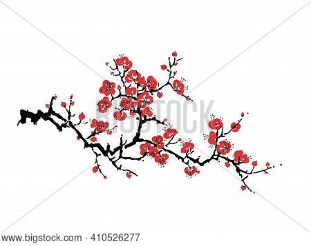 Decorative Sakura Blossom - Japanese Cherry Tree Isolated On White Background. Artistic Branch Sakur