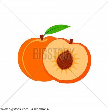 Vector Set Of Half And Whole Of Peach. Peaches Isolated On White Background.