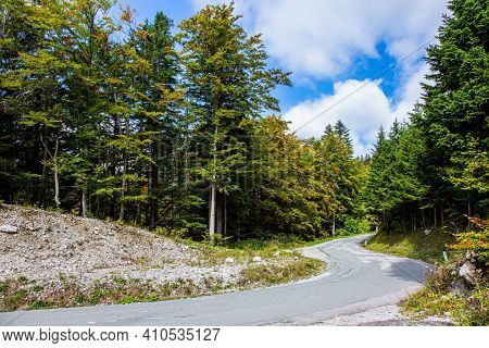 Asphalt road in a picturesque autumn forest. Beautiful sunny autumn day. Picturesque Julian Alps.  Travel to Slovenia