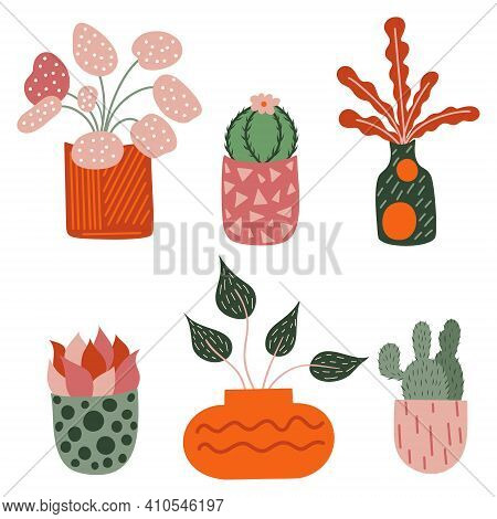 Vector Elements Set Of Decoration Plants, Succulent For Cozy Home D Cor. Hand Drawn Isolate Illustra