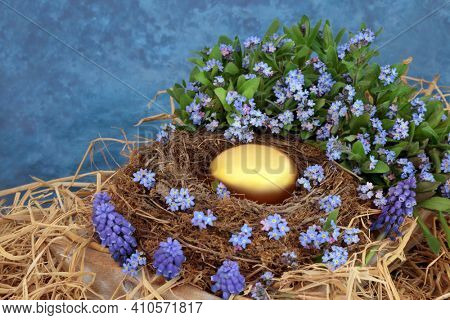 Golden nest egg retirement fund and financial savings concept with gold egg in a natural nest, forget me not and grape hyacinth flowers on mottled blue background.