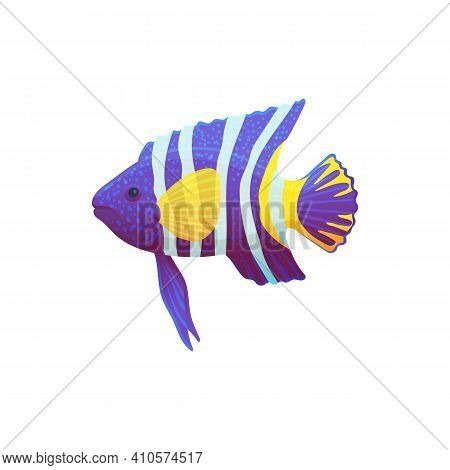Fancy Colorful Tropical Ocean Or Sea Fish Flat Vector Illustration Isolated