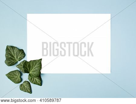Frame And Green Leaves On Blue Background. Paper Blank. Creative Arrangement Of Green Ivy Leaves.