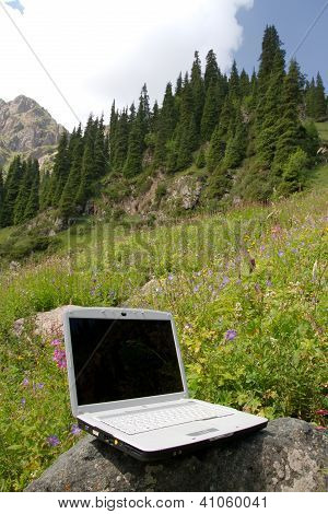 Laptop On A Stone