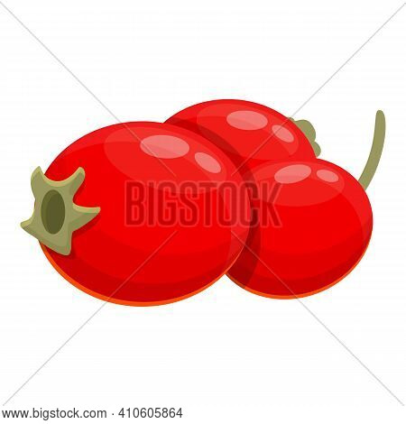 Hawthorn Fruits Icon. Cartoon Of Hawthorn Fruits Vector Icon For Web Design Isolated On White Backgr
