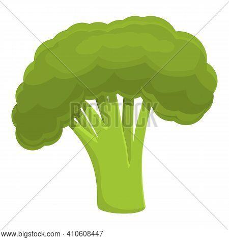 Farm Broccoli Icon. Cartoon Of Farm Broccoli Vector Icon For Web Design Isolated On White Background