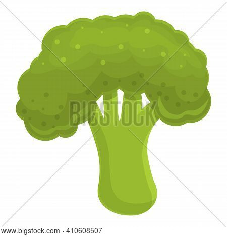 Broccoli Vegetable Icon. Cartoon Of Broccoli Vegetable Vector Icon For Web Design Isolated On White