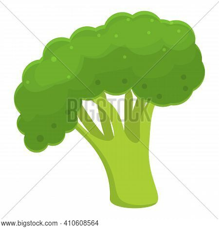 Healthy Broccoli Icon. Cartoon Of Healthy Broccoli Vector Icon For Web Design Isolated On White Back