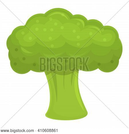 Broccoli Ingredient Icon. Cartoon Of Broccoli Ingredient Vector Icon For Web Design Isolated On Whit